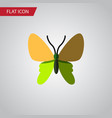Isolated moth flat icon beauty fly element vector image