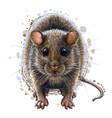 mouse artistic graphic color portrait a mous vector image