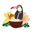 toucan and flowers coconut cocktail tropical vector image vector image
