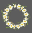 chamomile flowers wreath on grey background vector image vector image