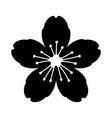cherry blossom flower or sakura festival icon vector image vector image