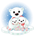 christmas polar bear family vector image vector image