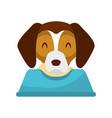 cute dog mascot with dish food vector image vector image