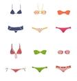 female swimwear vector image vector image