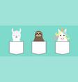 llama alpaca sloth unicorn in pocket animal vector image vector image