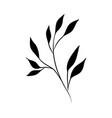 minimalist tattoo rustic branch flora silhouette vector image vector image