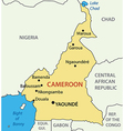 Republic of Cameroon - map vector image vector image
