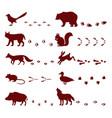 traces animals foot steps set contour