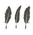 set of three isolated feathers for writing vector image