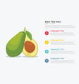 avocado fruit infographics with some point title vector image