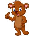 Cartoon teddy bear giving thumb up vector image vector image