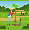 flat man character planting tree in the park vector image