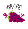 hand draw red grape blue vector image