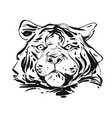 hand drawn abstract ink graphic rough tiger vector image vector image
