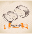 hand drawn sketch mozzarella cheese background of vector image