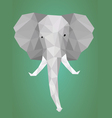 Low polygonal elephant head vector image vector image