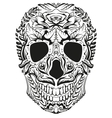 Black and white decoration human skull Day of vector image