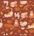 pattern with cats pumpkins and leaves autumn vector image vector image