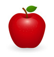 red apple isolated vector image