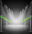 The shined green way entrance vector image