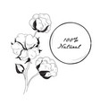 cotton icon natural material sign with flower vector image