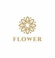 luxury flower logo design concept wedding logo vector image vector image