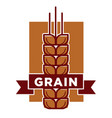 qualitative grain product isolated emblem with vector image