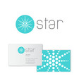 star logo abstract emblem business card vector image