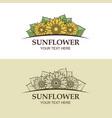 sunflower icon set vector image
