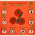 Tomatoes Benefits Image vector image vector image