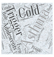 Asthma in Adolescents Word Cloud Concept vector image vector image