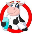 cartoon happy cow drinking water vector image vector image