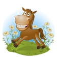 funny horse on nature vector image vector image