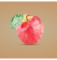 Low Poly Apple vector image