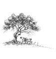 a bench under the tree park or garden wallpaper vector image vector image
