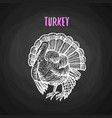 bird turkey in chalk style on blackboard vector image vector image