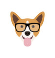 corgi dog in fashions glasses funny dog icon vector image vector image