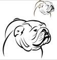 English Bulldog 2 vector image