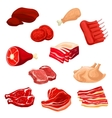 Fresh meat icons of beef pork poultry mutton vector image