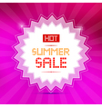 Hot Summer Sale Title on Pink Background vector image vector image