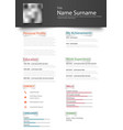 professional personal resume cv with design vector image vector image