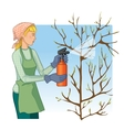 Woman spraying tree in garden with protection vector image vector image