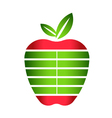 Apple with Stripes Logo vector image vector image