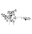black silhouette bush shadow for overlay vector image vector image