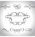 curls vector image
