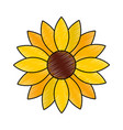 cute sunflower decorative icon vector image vector image