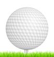 Golf Ball in Grass vector image vector image