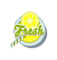 lemon fresh vector image