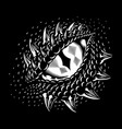 monochrome dragon eye vector image