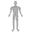 skull crossbones human figure vector image